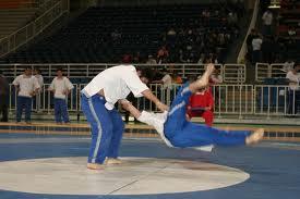 RCMGR Boxing/MMA: 5th World Pankration Athlima Championship 2012 Results