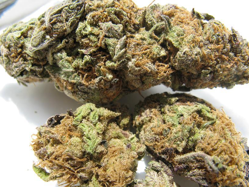 medicalmarijuanadoctors