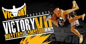 MMA2014_ 599x310.599.310